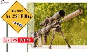 Scope for .223 Rifles Reviews