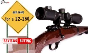Best Scope for a 22-250 Review 2021