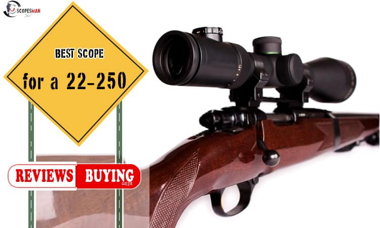 Best Scope for a 22-250 Review 2020